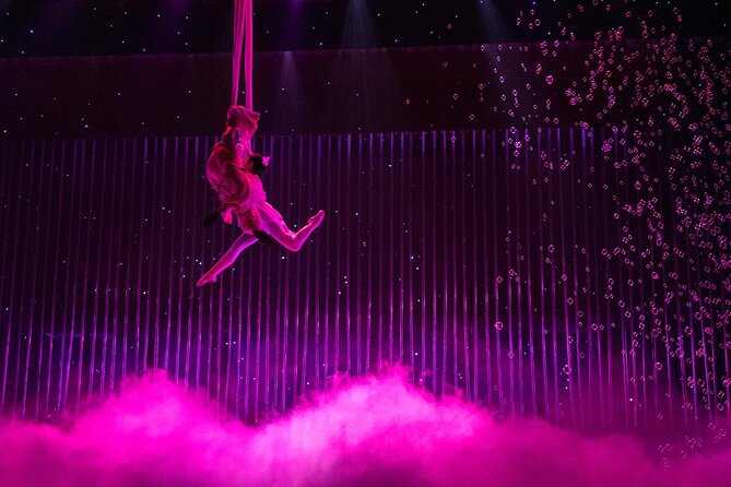 Acrobatic Shows in Beijing