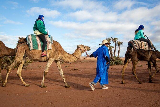 Camel Rides in Marrakech
