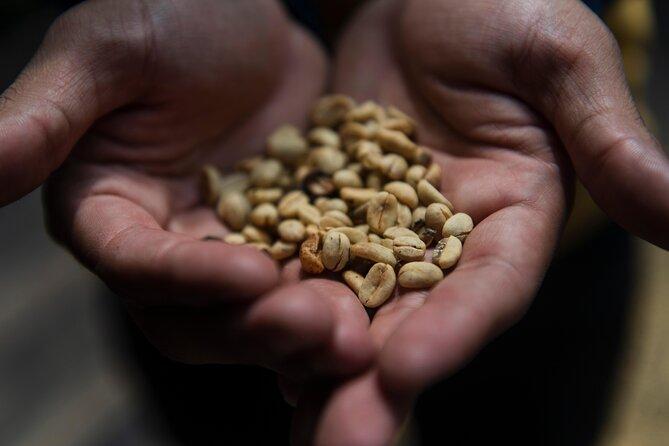Colombian Coffee Tours in Bogotá