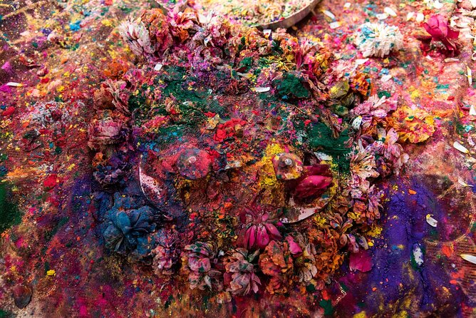 How to Experience the Holi Festival of Colors in India
