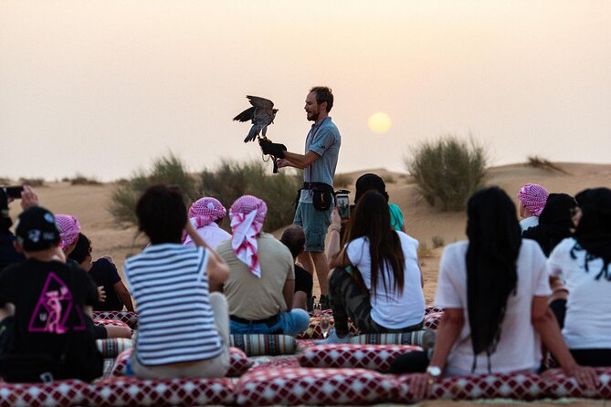 Falconry Experiences in Dubai