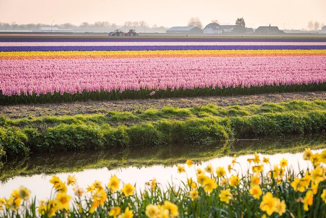 Things to Do in Amsterdam in Spring