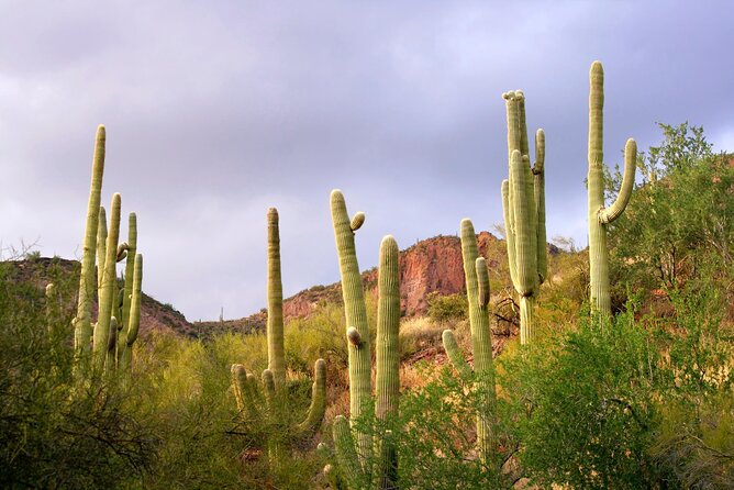 How to Spend 2 Days in Phoenix