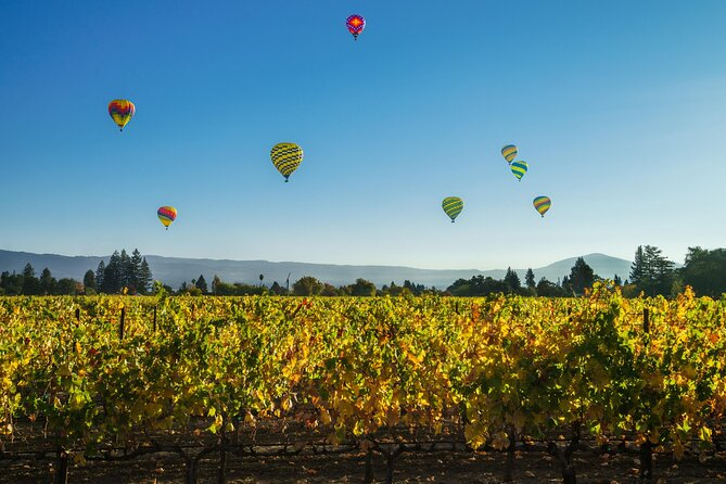 How to Experience Wine Harvest Season in the Napa Valley