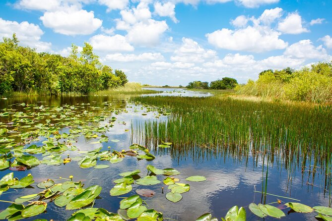 How to Spend 2 Days in Everglades National Park