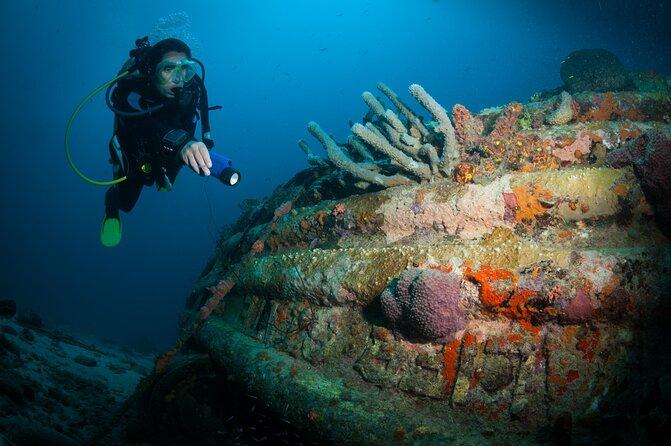 Top Diving Spots in Bonaire for Advanced Scuba Divers