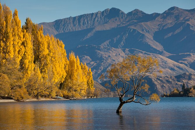 How to Spend 2 Days in Wanaka
