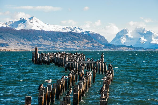 How to Spend 1 Day in Puerto Natales