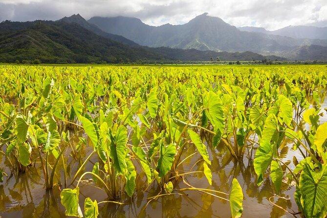 How to Spend a Rainy Day on Kauai