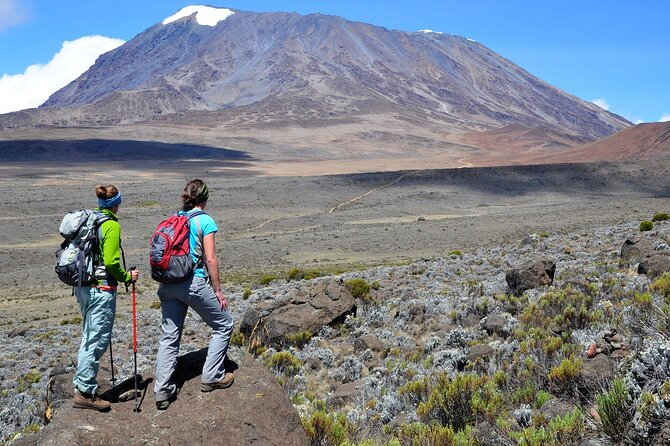 Mt. Kilimanjaro Day Trip Treks (Options: Marangu Route, Machame & Shira Plateau)