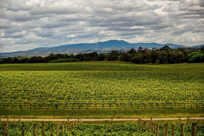 How to Spend 2 Days in the Yarra Valley