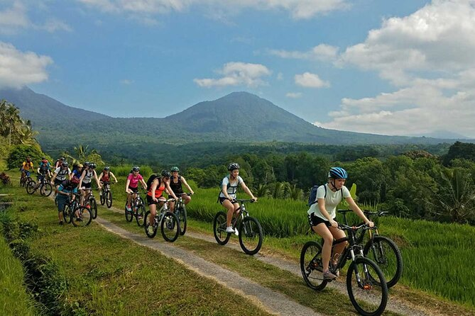 Full-Day Private Cycling Experience from Batur to Ubud