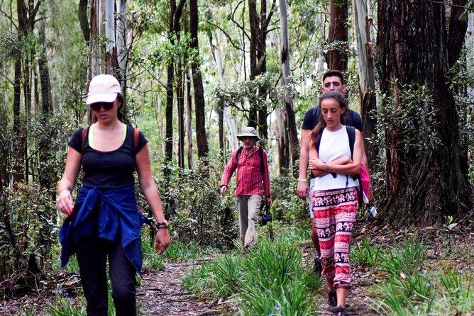 Trekking to Heeloya Village from Kandy
