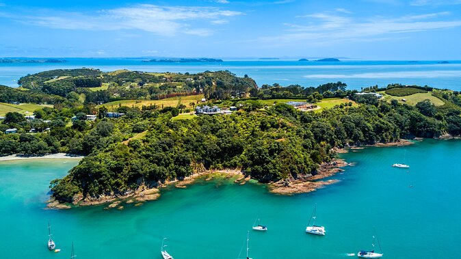 6 Must-See Auckland Neighborhoods & How to Visit