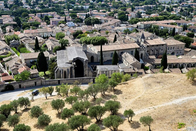 Discover Avignon its history, daily life & the village of Villeneuve lès Avignon