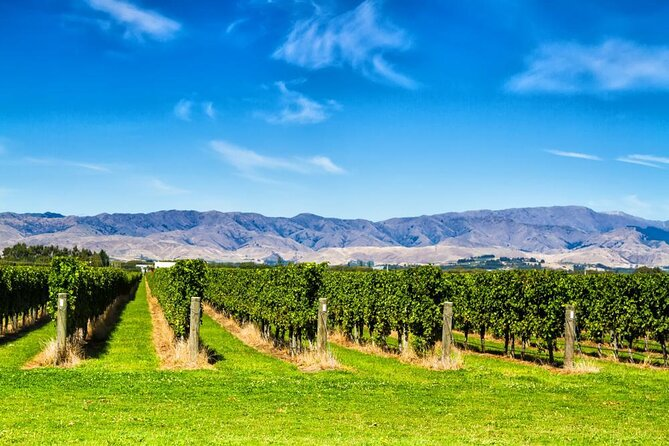 How to Spend 1 Day in Blenheim