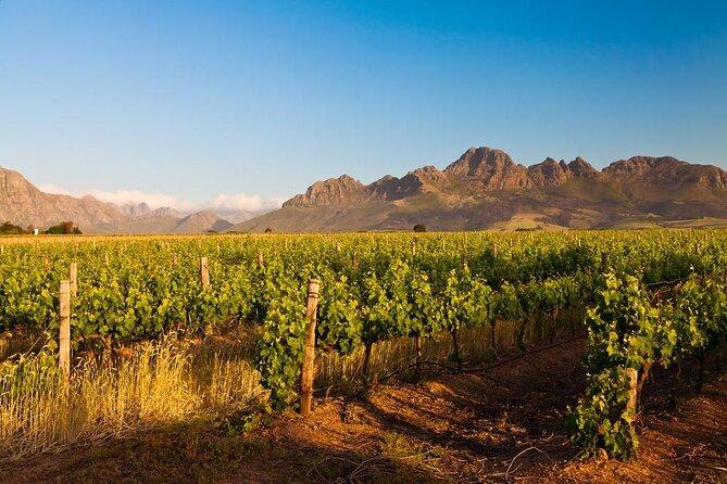How to Spend 3 Days in Stellenbosch