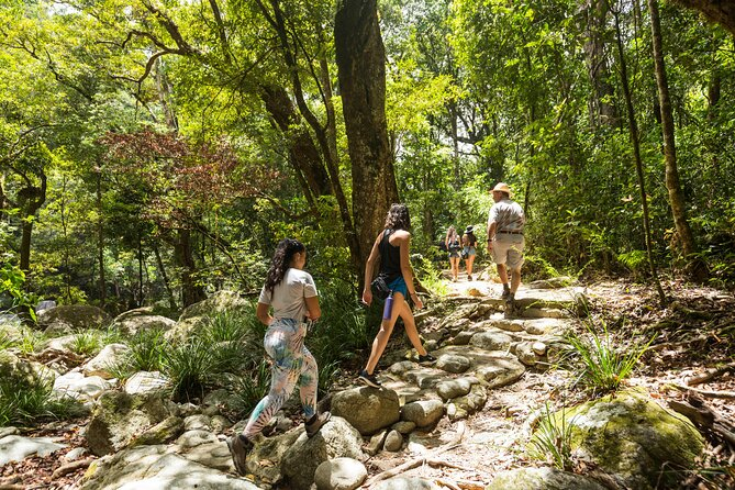 Things to Do in Cairns This Spring
