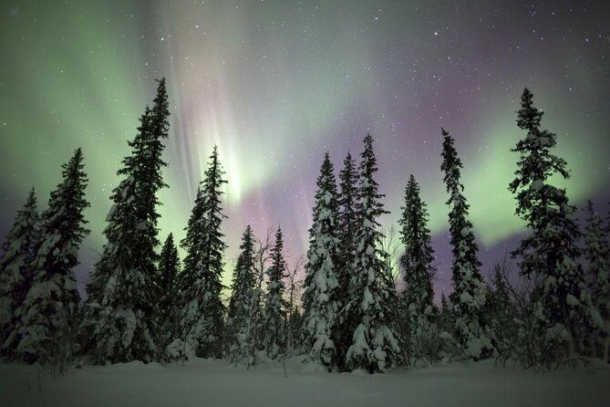 How to Spend 1 Day in Fairbanks