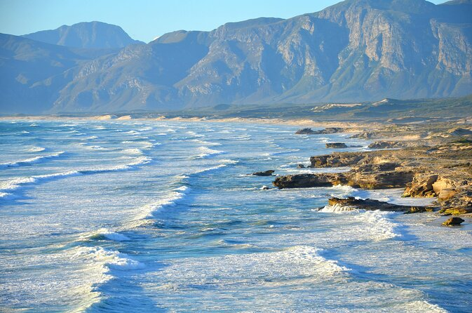 How to Spend 1 Day in Hermanus