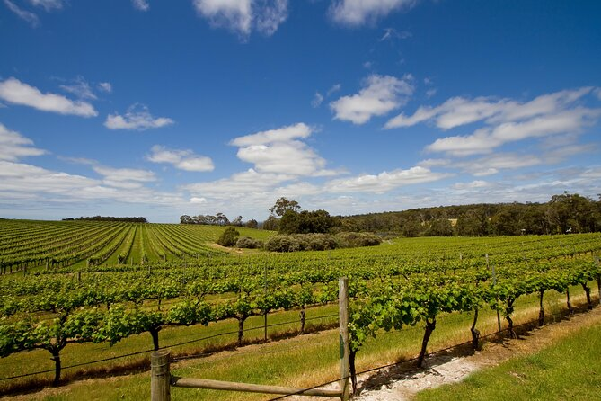How to Spend 2 Days in Margaret River