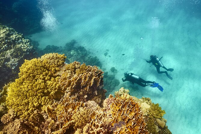 How to Spend 1 Day in Marsa Alam