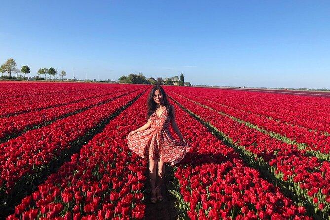 Keukenhof, Tulips Fields & Delft Day Tour (Small Group 8 pax max)