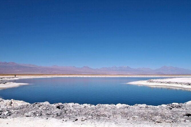 Cejar Lagoon and Ojos del Salar in Atacama