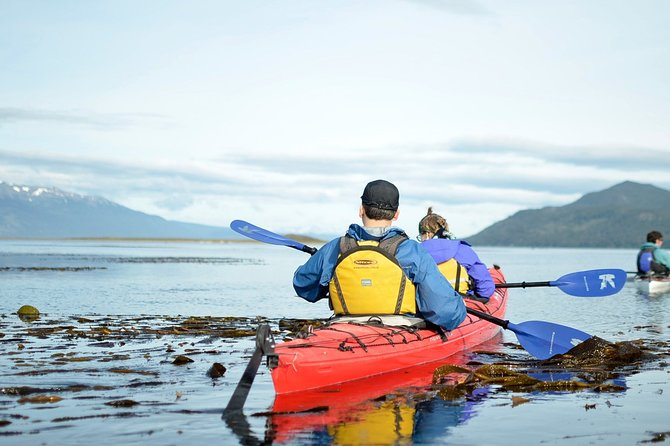 Private Half-Day Sea Kayak Beagle Channel Tour with lunch & drinks from Ushuaia