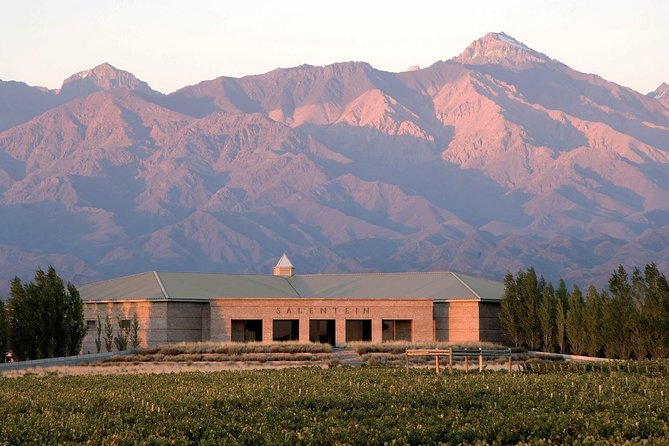 Full-Day Uco Valley Wine Experience