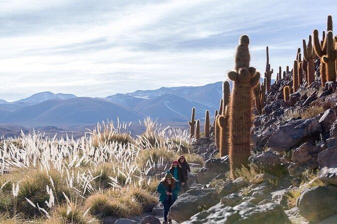 Puritama Hot Springs and Guatin Trekking in Atacama