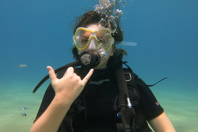 Scuba Review Dive in Lahaina