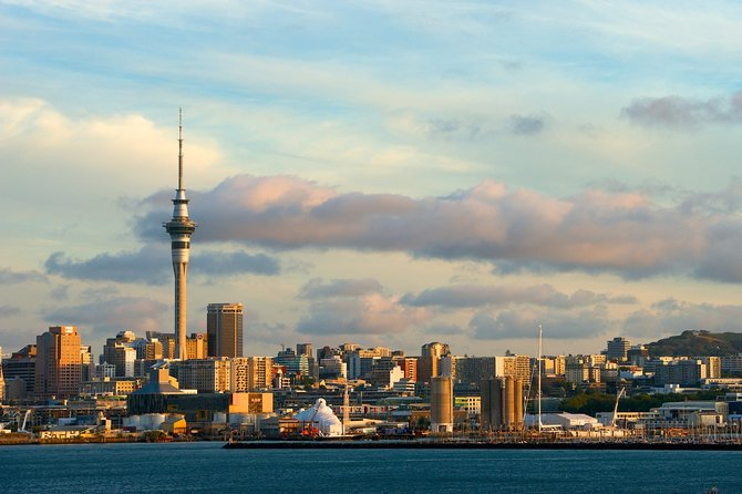 Auckland Airport Transfers: Auckland Airport AKL to Auckland in Business Car