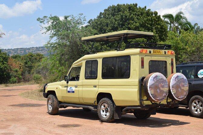 2 DAYS AKAGERA NATIONAL PARK SAFARIS - Shalom Safaris