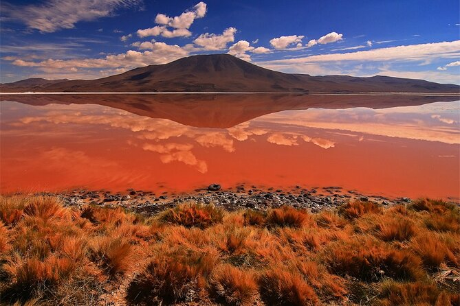 Private 3 Days tour Uyuni Salt Flats and Colorful Lagoons from Uyuni photo 15
