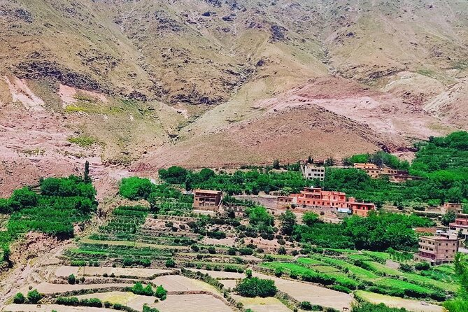 Private Half Day Hike & Atlas Mountains From Marrakech
