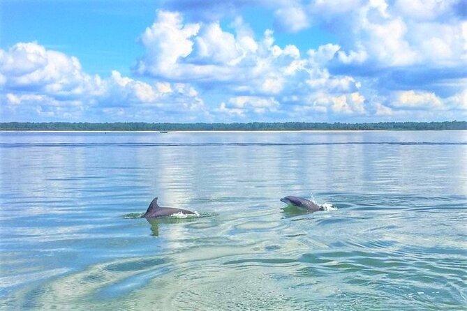 Hilton Head Sunrise Dolphins & Donuts Cruise