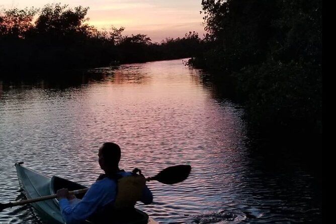 Guided Bioluminescence Kayaking Tour