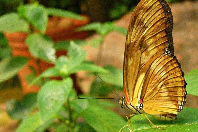 Iguazú Biocenter Tour