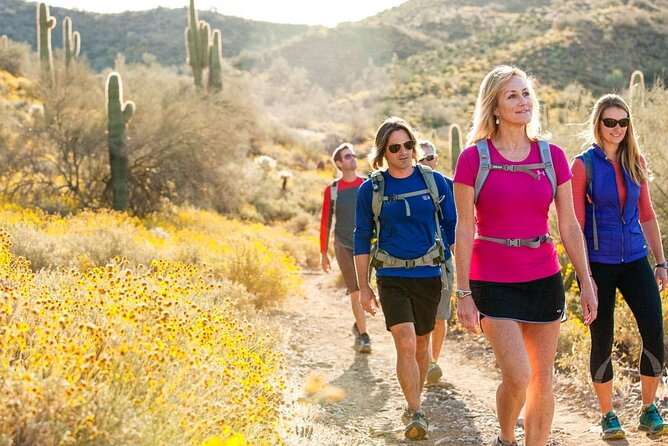 Half-Day Sonoran Desert Hiking Tour
