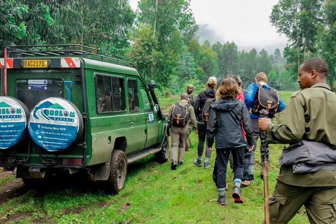 8 Days Rwanda Cultural, Nyungwe, Volcanoes and Akagera Safaris