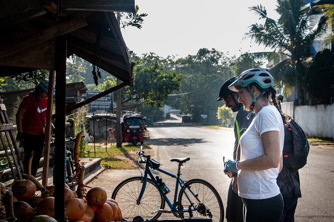 Kingdom Trail Cycling Tour from Colombo