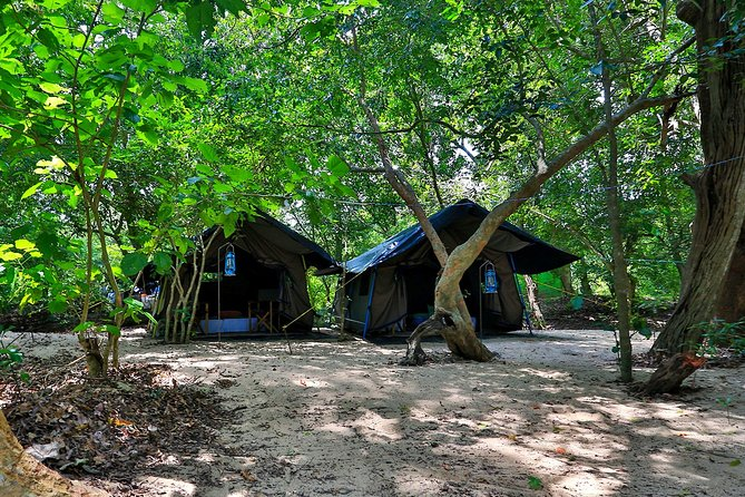 Two Night Camping in Kumana National Park