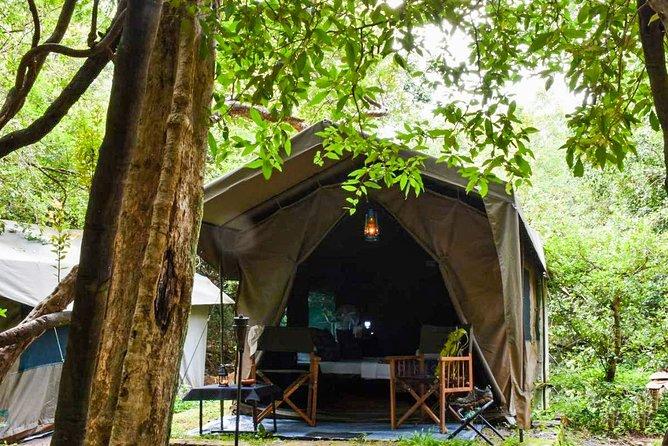 One Night Camping in Wasgamuwa National Park