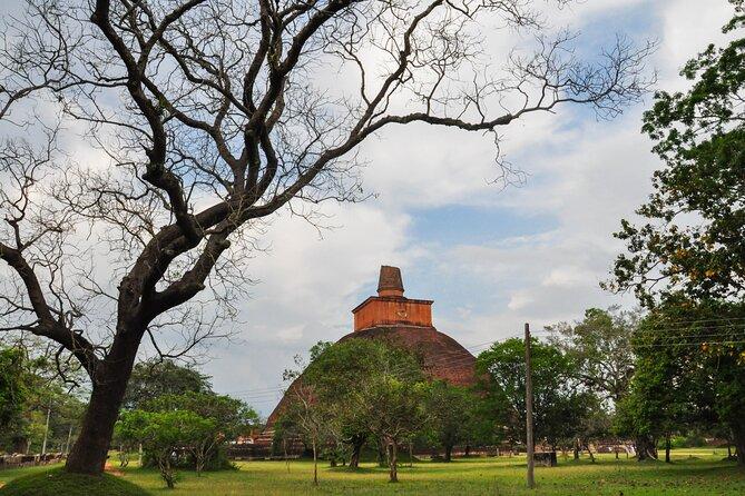 Anuradhapura Buddhist Icons Tour from Habarana