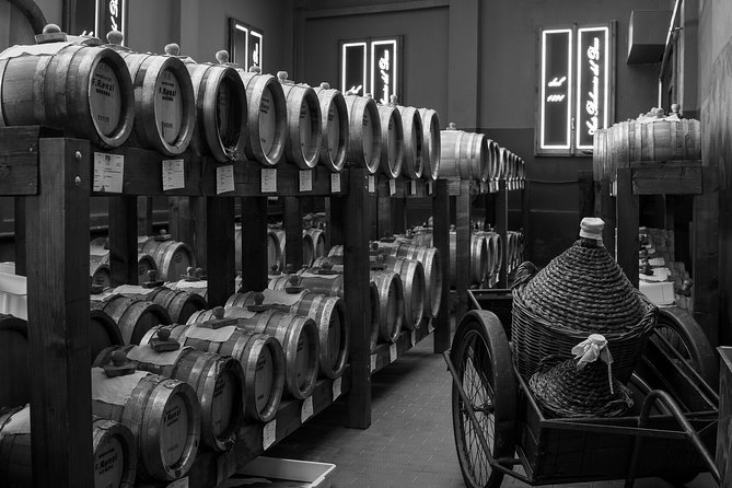 Guided tour and tasting of Balsamic Vinegar of Modena at the Cellar