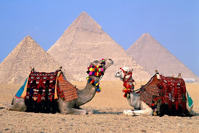 Nice Day Tour To Cairo By Plane From Sharm El Sheikh Private Guided Tour