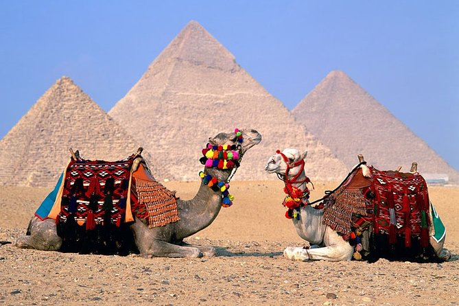 Best Cairo By Bus from HURGHADA (Sphinx & Pyramids and Egyptian Museum & Lunch )