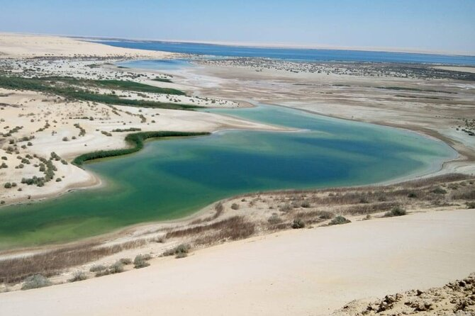 Full day tour to Fayoum Oasis