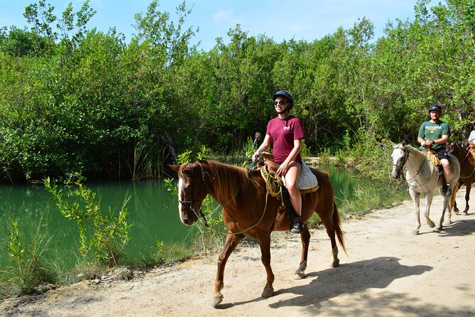 STROLL the Jungle Trails on a HORSE. Includes Transportation and Equipment.